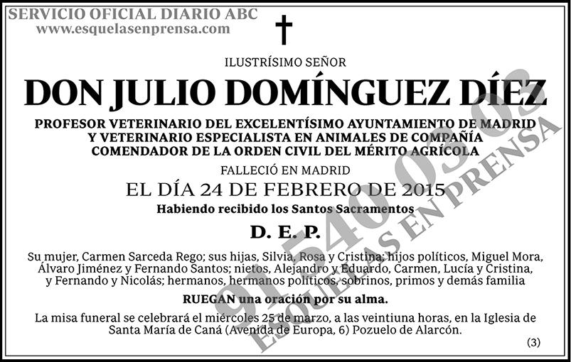 Julio Domínguez Díez
